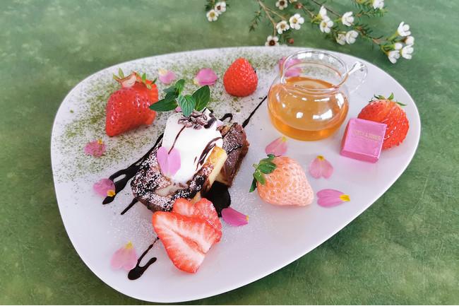 【リストランテAO 逗子マリーナ】ランチコース「苺フェア」を3月6日(水)より期間限定開催。