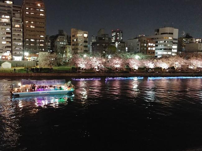 船の上からお花見「大川お花見貸切クルーズ」を 3月20日(土)〜4月18日(日)開催予定!