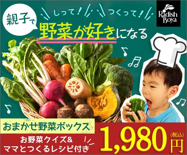 おためしセット販売、ヘルシーな食材いっぱい【らでぃっしゅぼーや】!